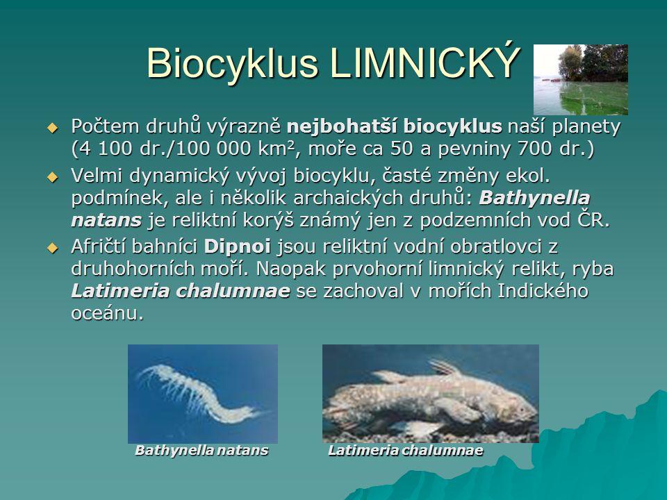 Biocyklus LIMNICKÝ Počtem druhů výrazně nejbohatší biocyklus naší planety (4 100 dr./100 000 km2, moře ca 50 a pevniny 700 dr.)
