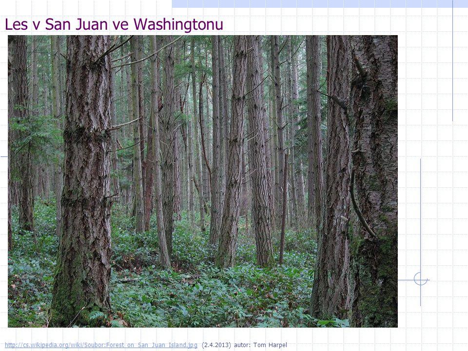 Les v San Juan ve Washingtonu