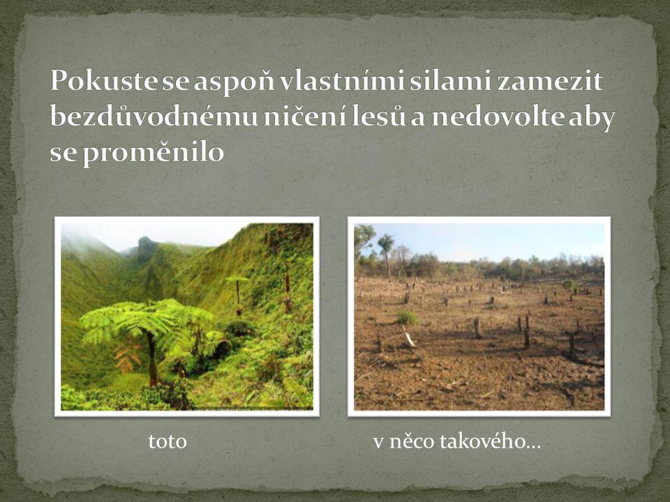 Pokuste se aspoň vlastními silami zamezit bezdůvodnému ničení lesů a nedovolte aby se proměnilo