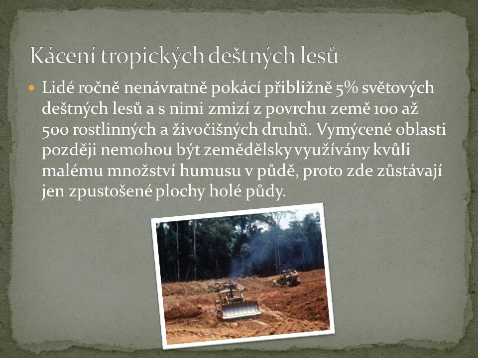 Kácení tropických deštných lesů