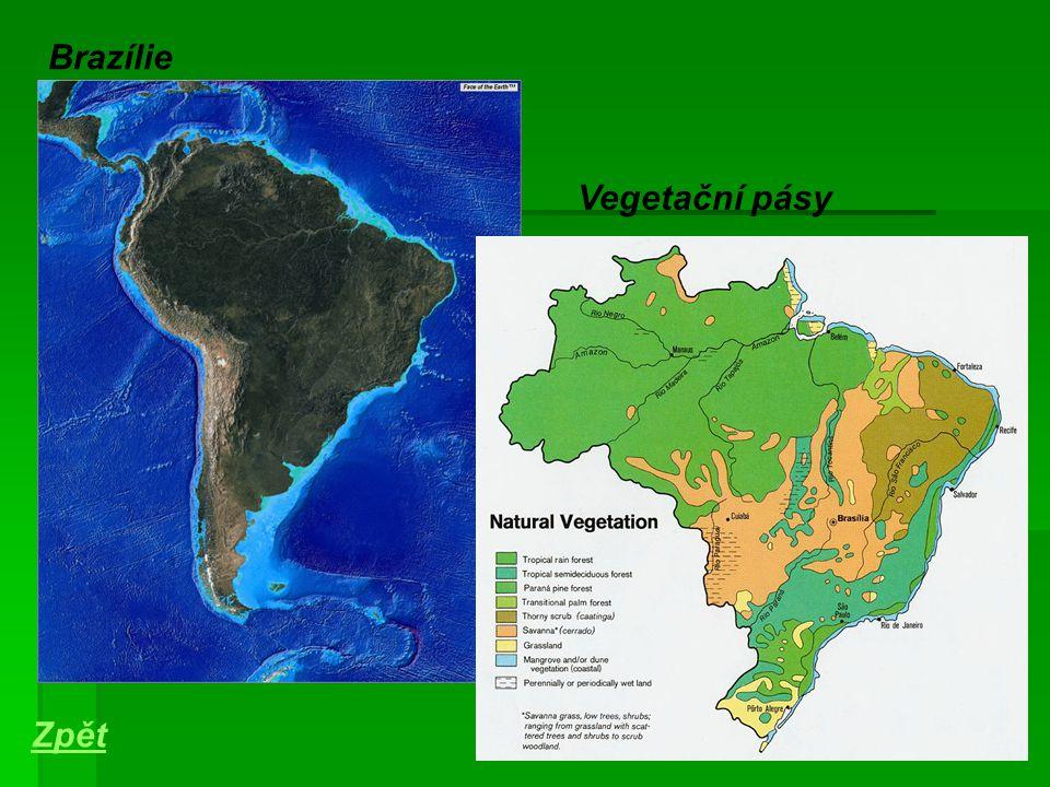 Brazílie Vegetační pásy Zpět