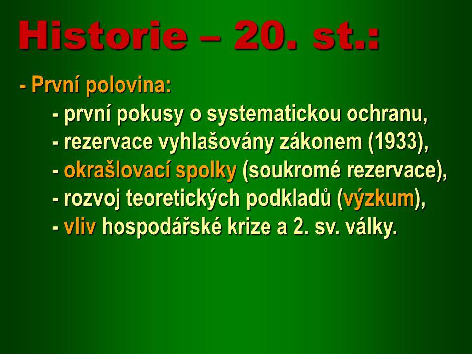 Historie – 20. st.: - První polovina: