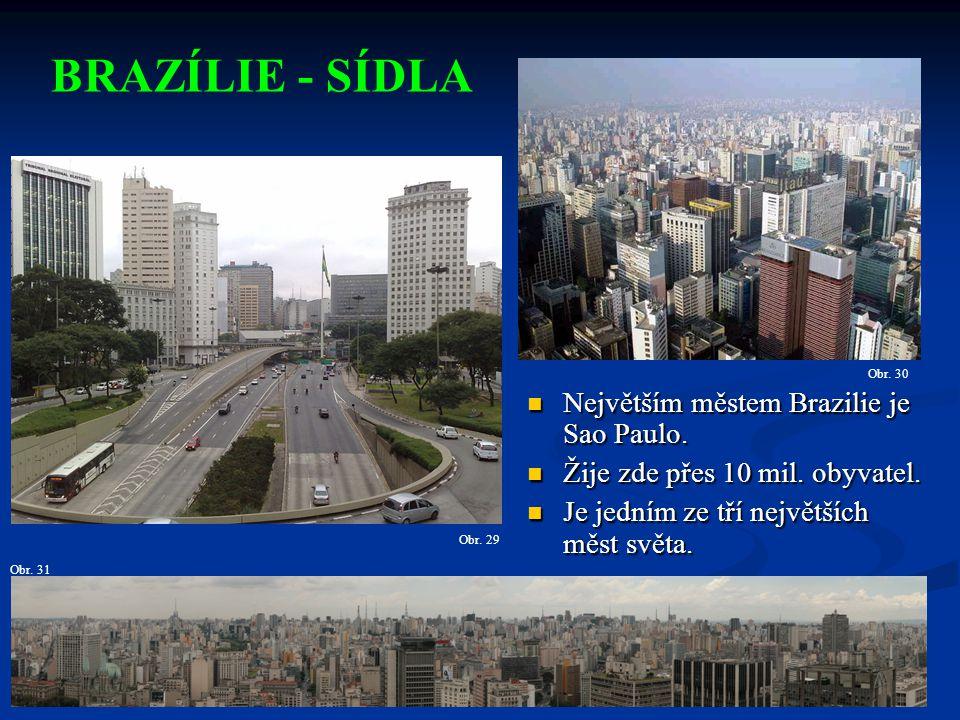 BRAZÍLIE - SÍDLA Největším městem Brazilie je Sao Paulo.