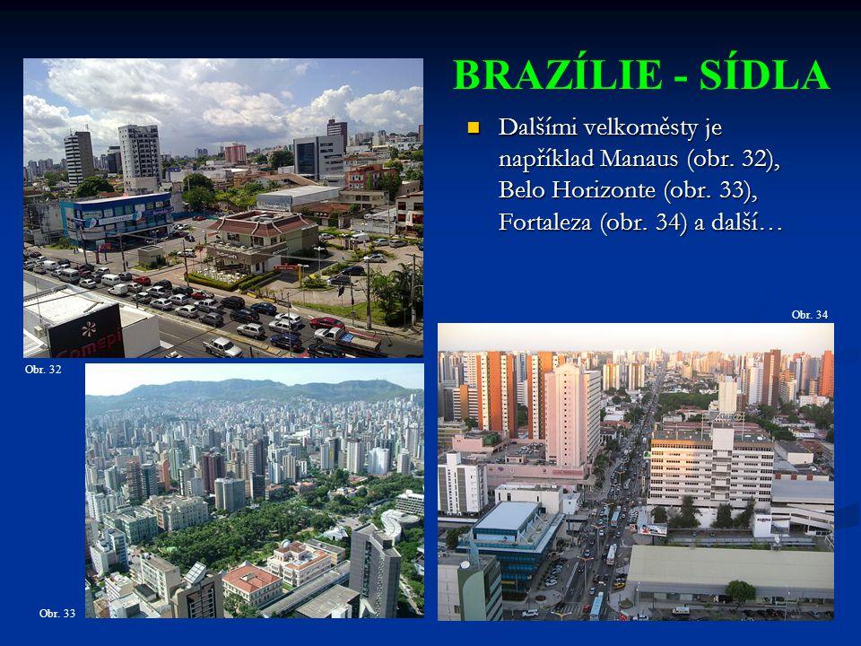 BRAZÍLIE - SÍDLA Dalšími velkoměsty je například Manaus (obr. 32), Belo Horizonte (obr. 33), Fortaleza (obr. 34) a další…