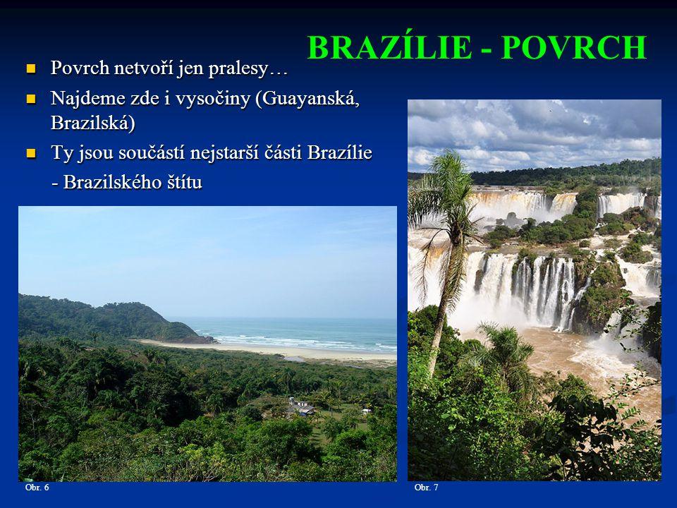 BRAZÍLIE - POVRCH Povrch netvoří jen pralesy…