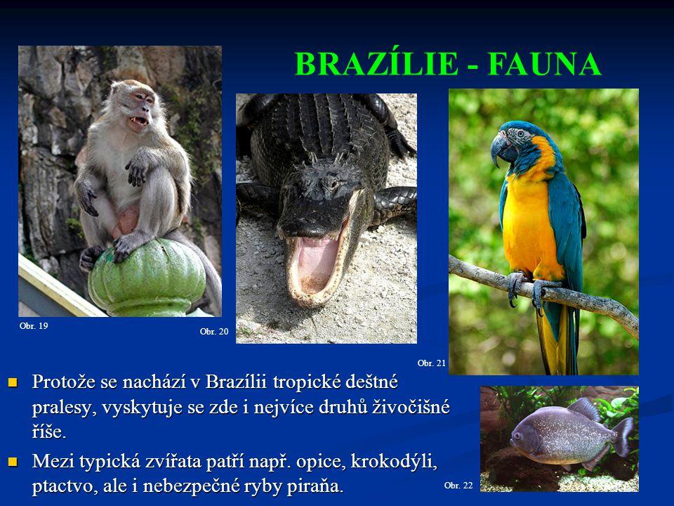 BRAZÍLIE - FAUNA Obr. 19. Obr. 20. Obr. 21.