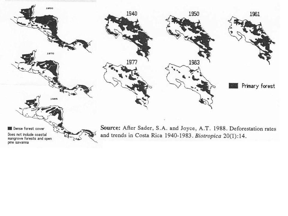 Rychlost odlesňování v oblastech střední Ameriky