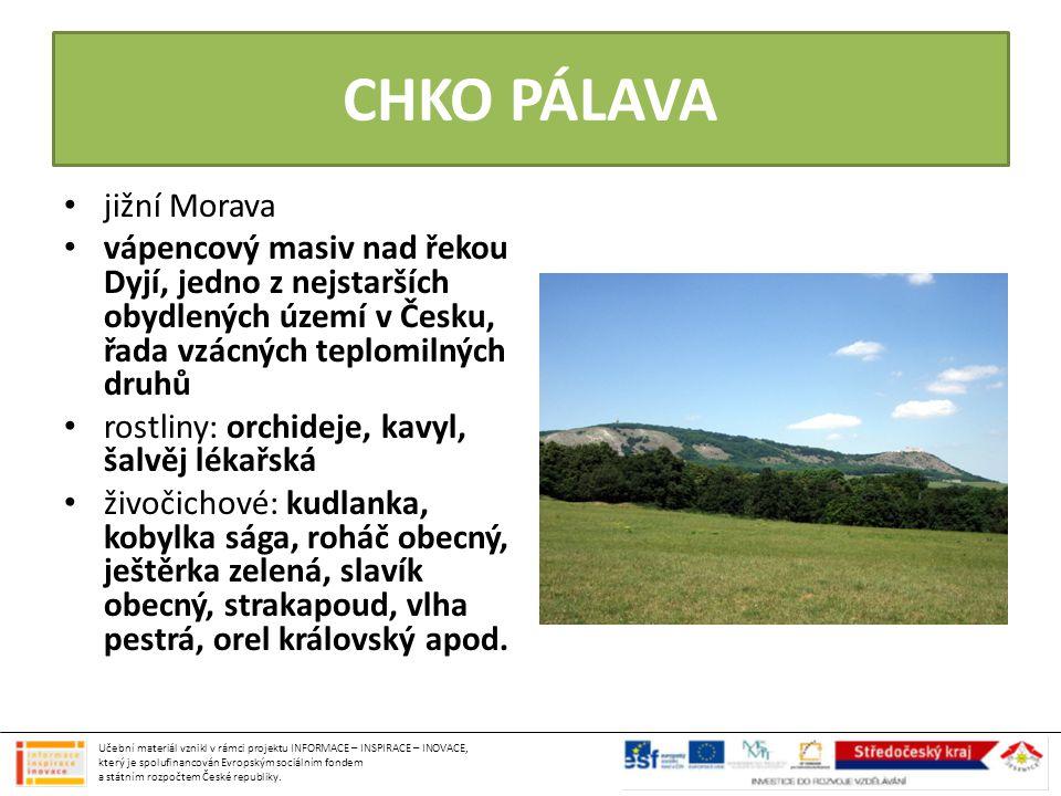 CHKO PÁLAVA jižní Morava