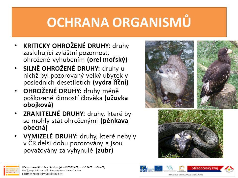 OCHRANA ORGANISMŮ KRITICKY OHROŽENÉ DRUHY: druhy zasluhující zvláštní pozornost, ohrožené vyhubením (orel mořský)