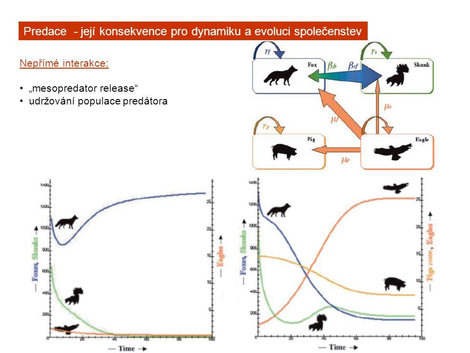 Predace - její konsekvence pro dynamiku a evoluci společenstev
