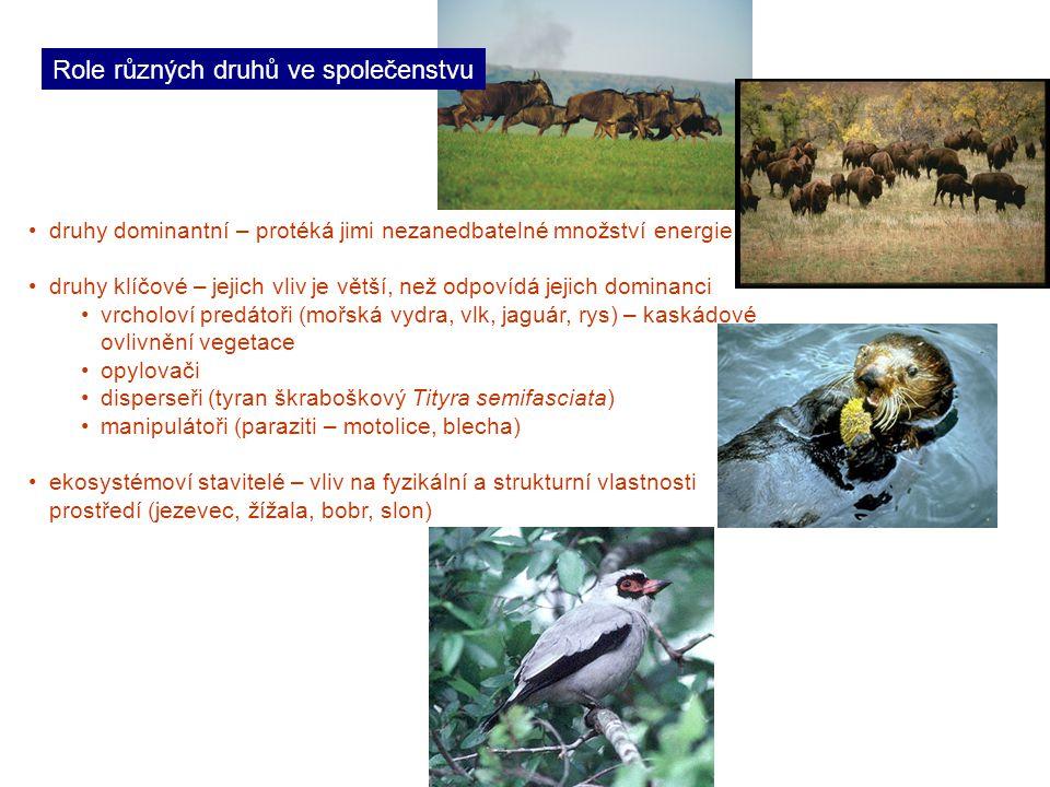 Role různých druhů ve společenstvu