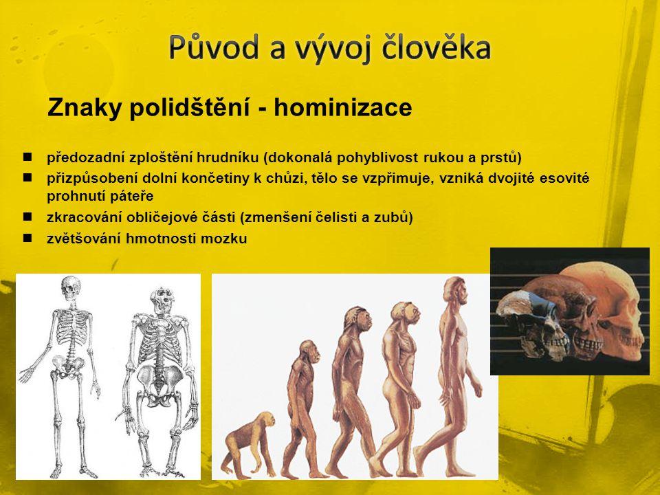 Původ a vývoj člověka Znaky polidštění - hominizace