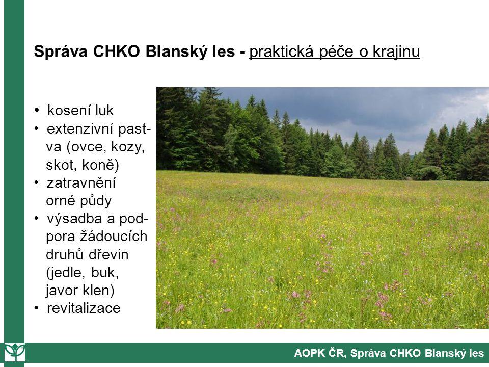 Správa CHKO Blanský les - praktická péče o krajinu