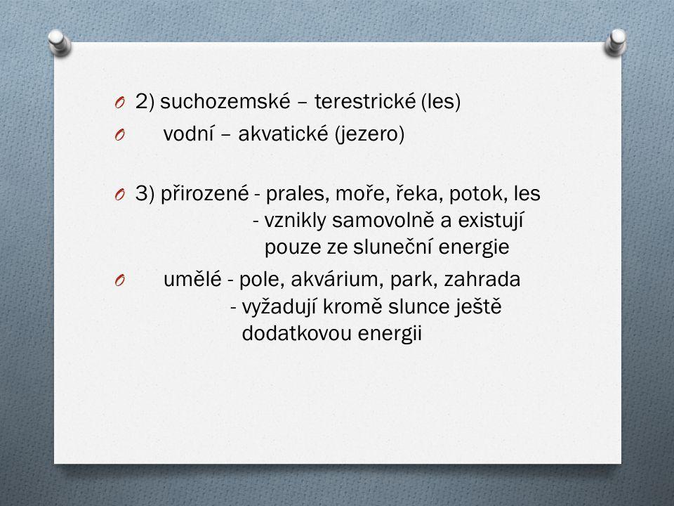2) suchozemské – terestrické (les)
