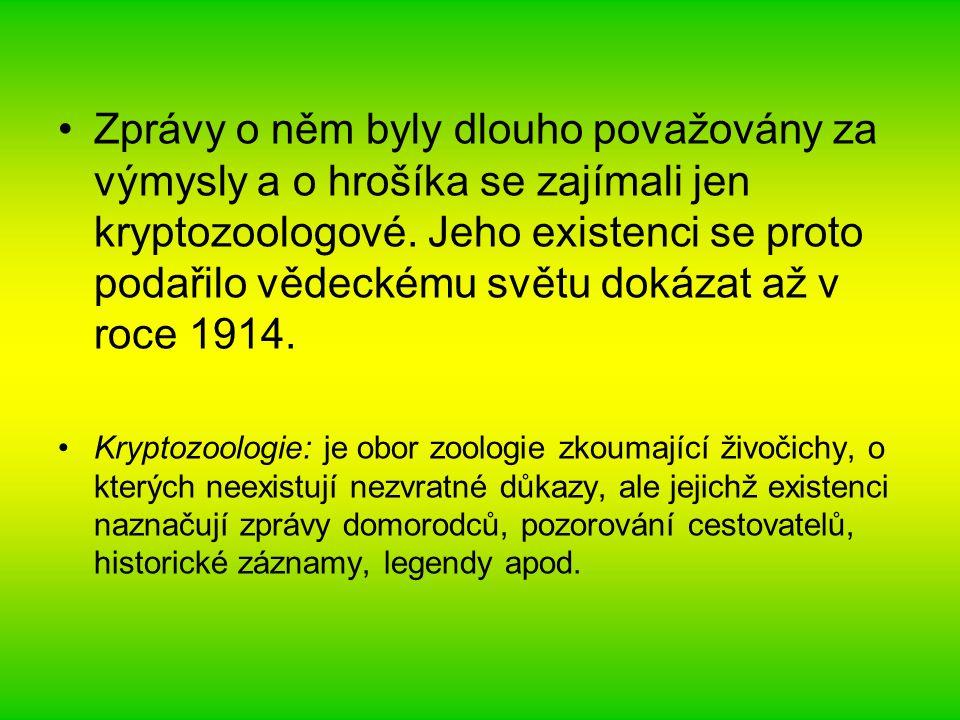 Zprávy o něm byly dlouho považovány za výmysly a o hrošíka se zajímali jen kryptozoologové. Jeho existenci se proto podařilo vědeckému světu dokázat až v roce 1914.