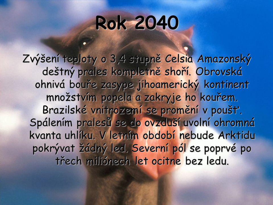 Rok 2040