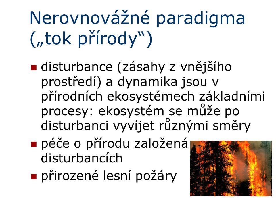 """Nerovnovážné paradigma (""""tok přírody )"""