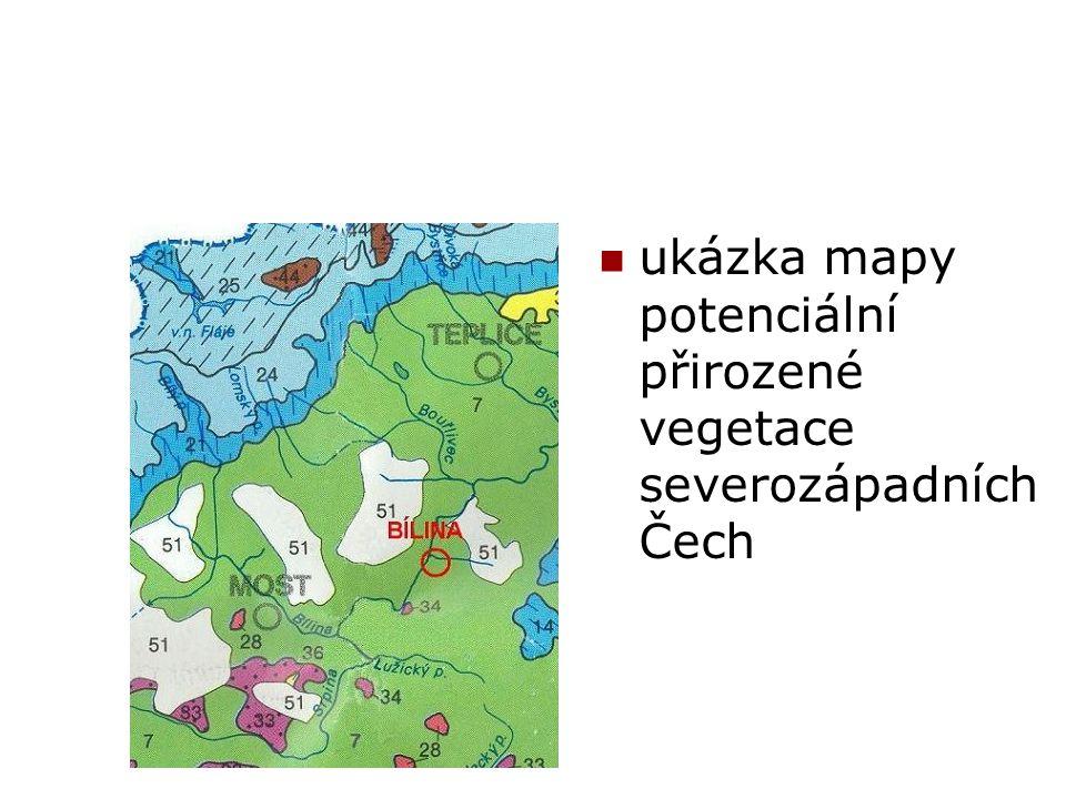 ukázka mapy potenciální přirozené vegetace severozápadních Čech