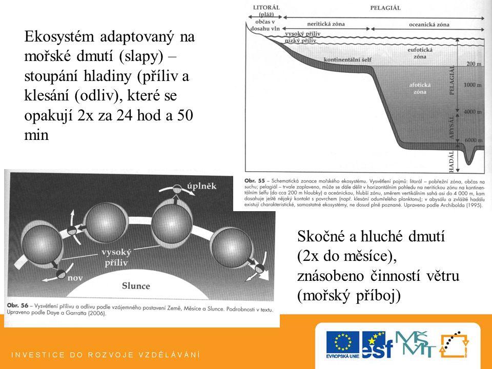 Ekosystém adaptovaný na mořské dmutí (slapy) – stoupání hladiny (příliv a klesání (odliv), které se opakují 2x za 24 hod a 50 min
