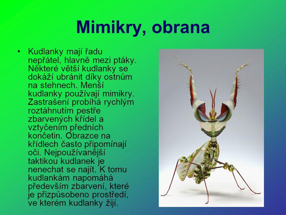 Mimikry, obrana