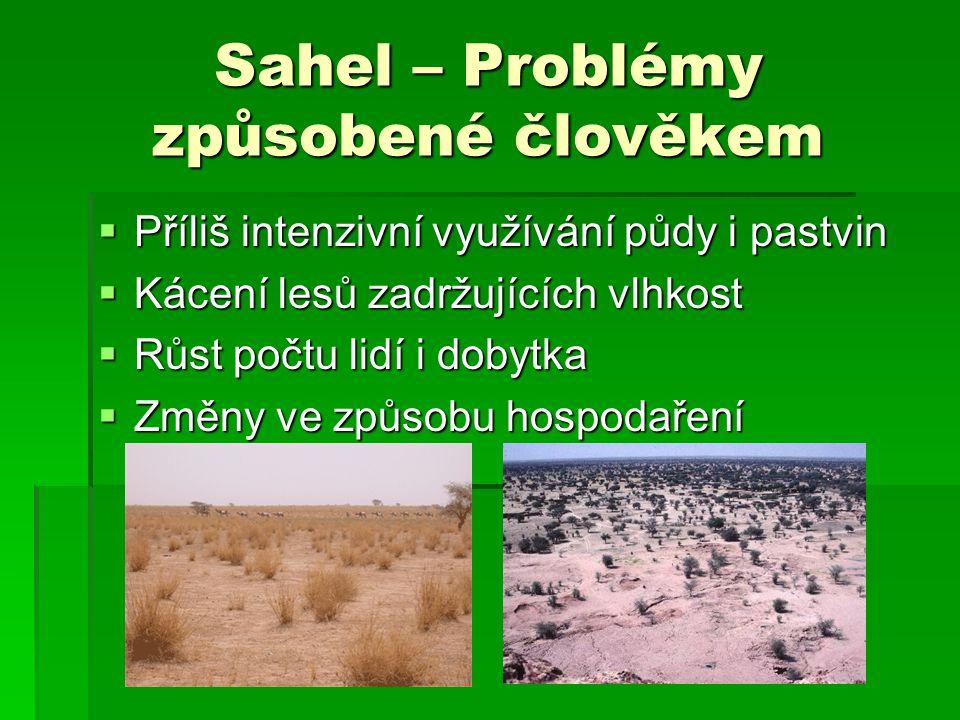 Sahel – Problémy způsobené člověkem
