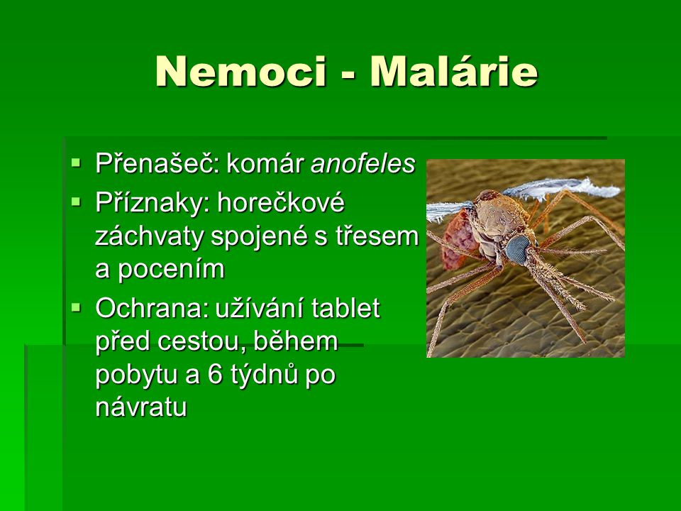 Nemoci - Malárie Přenašeč: komár anofeles