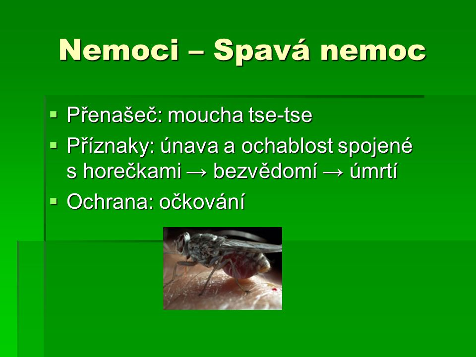 Nemoci – Spavá nemoc Přenašeč: moucha tse-tse