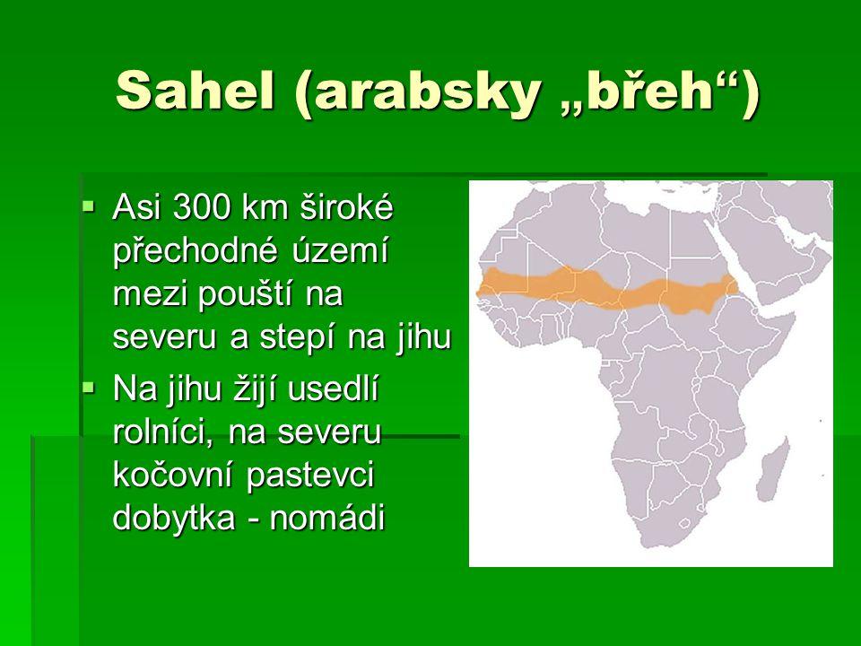 "Sahel (arabsky ""břeh )"