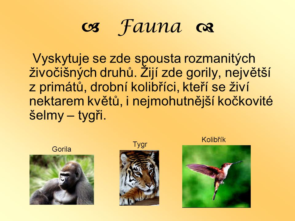 a Fauna d
