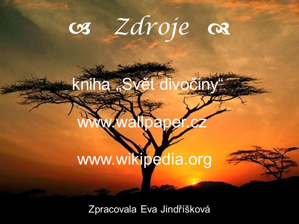 """a Zdroje d kniha """"Svět divočiny www.wallpaper.cz"""