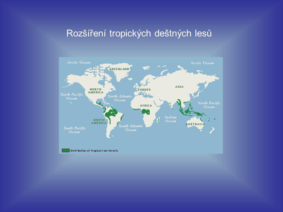 Rozšíření tropických deštných lesů