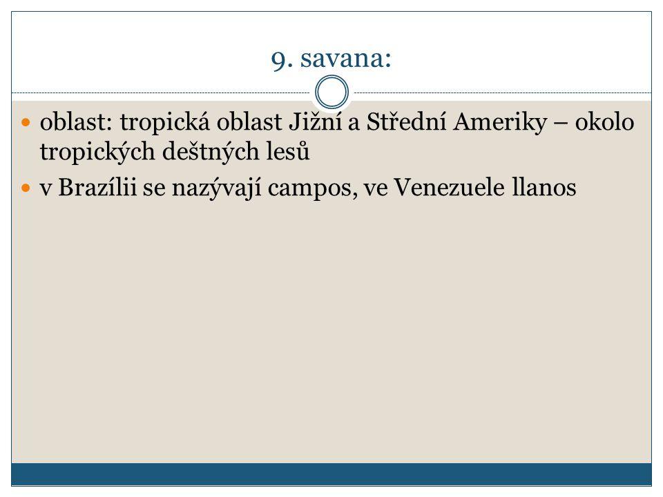 9. savana: oblast: tropická oblast Jižní a Střední Ameriky – okolo tropických deštných lesů.