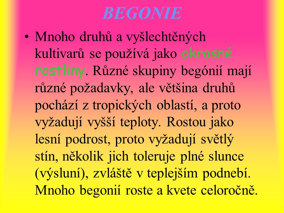 BEGONIE