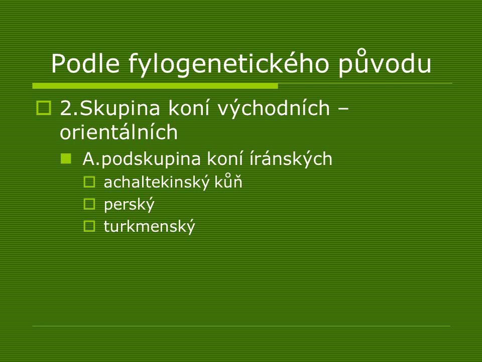 Podle fylogenetického původu