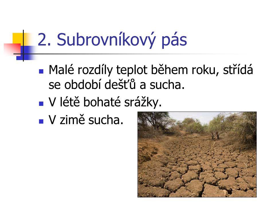 2. Subrovníkový pás Malé rozdíly teplot během roku, střídá se období dešťů a sucha. V létě bohaté srážky.