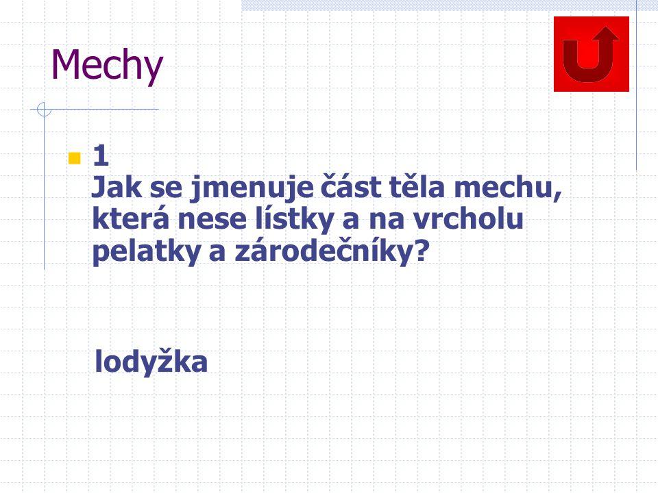 Mechy 1 Jak se jmenuje část těla mechu, která nese lístky a na vrcholu pelatky a zárodečníky.