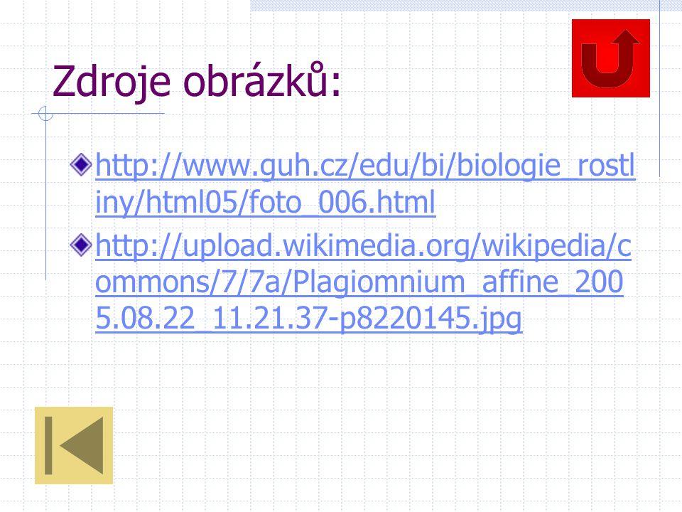 Zdroje obrázků: http://www.guh.cz/edu/bi/biologie_rostliny/html05/foto_006.html.