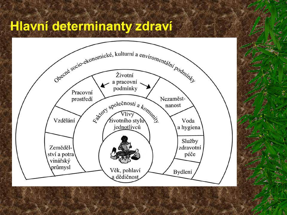 Hlavní determinanty zdraví