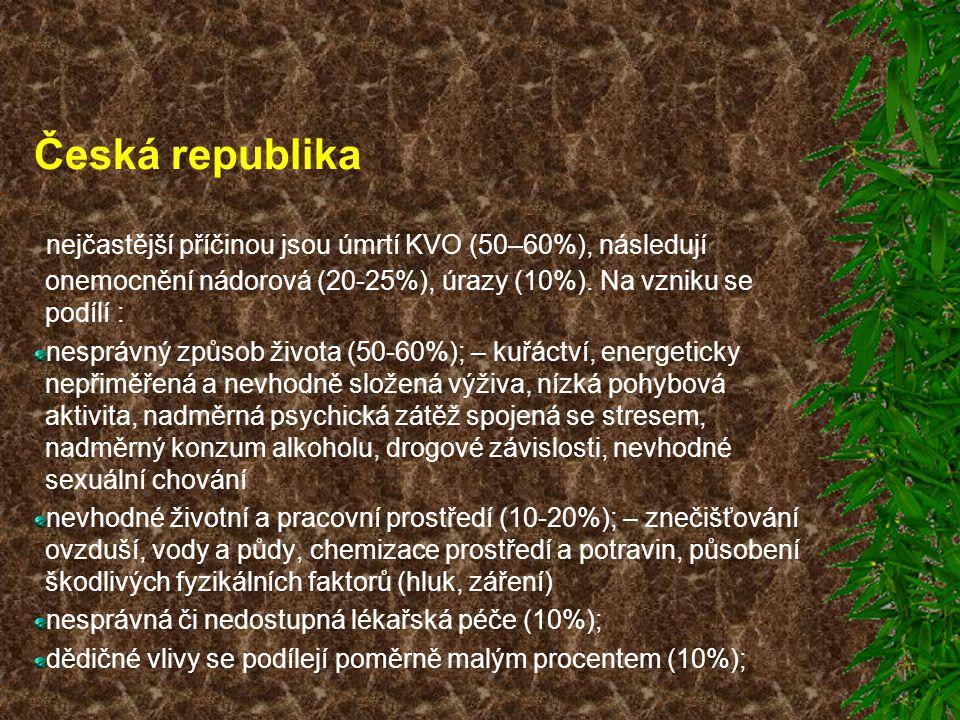 Česká republika nejčastější příčinou jsou úmrtí KVO (50–60%), následují onemocnění nádorová (20-25%), úrazy (10%). Na vzniku se podílí :