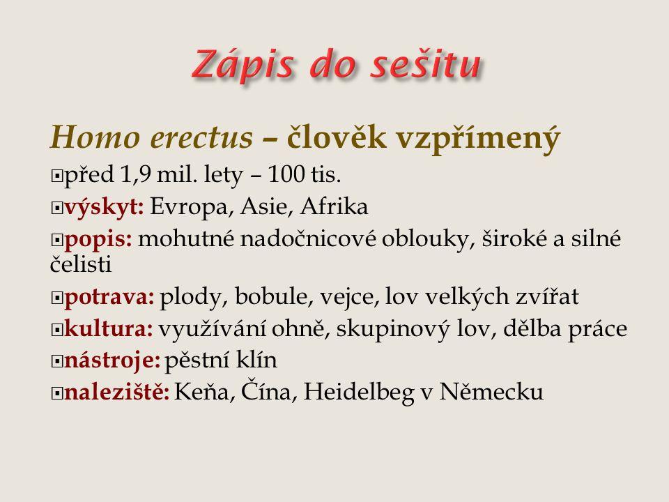 Zápis do sešitu Homo erectus – člověk vzpřímený