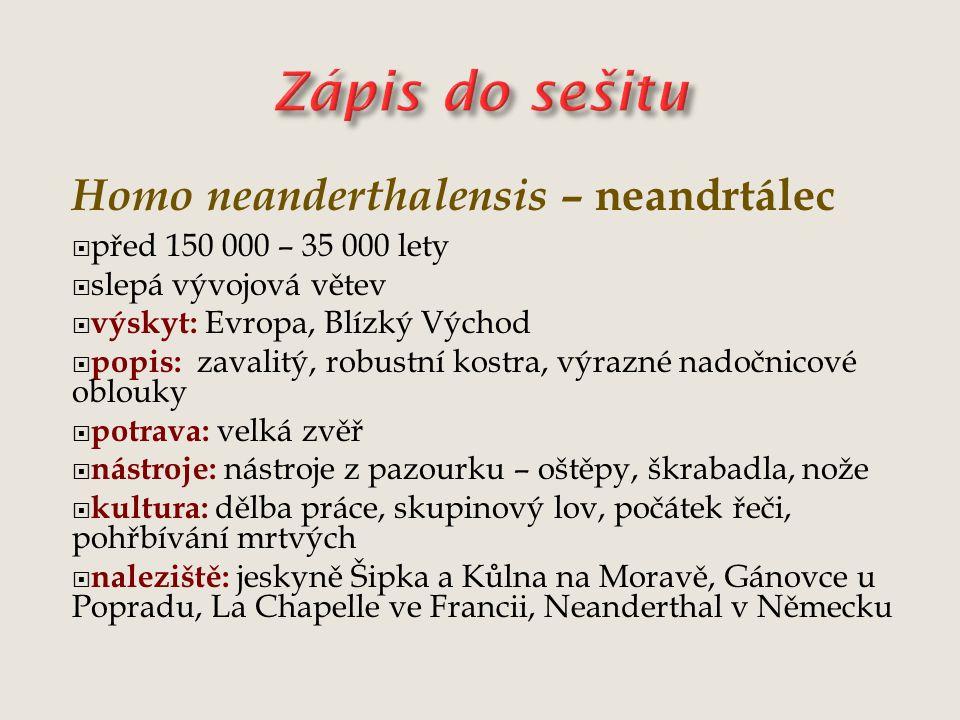 Zápis do sešitu Homo neanderthalensis – neandrtálec