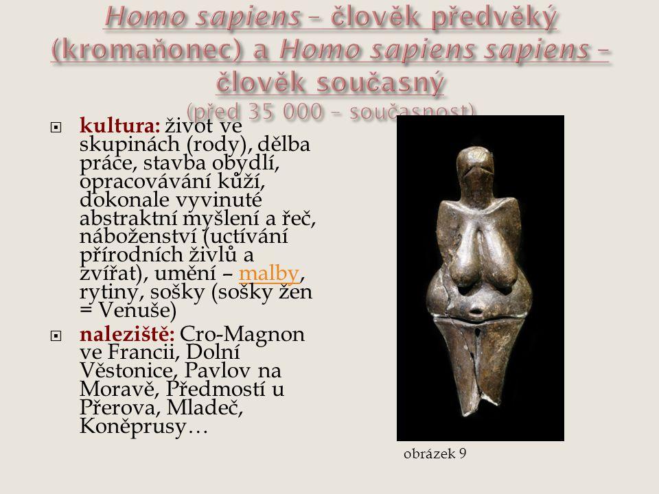 Homo sapiens – člověk předvěký (kromaňonec) a Homo sapiens sapiens – člověk současný (před 35 000 – současnost)