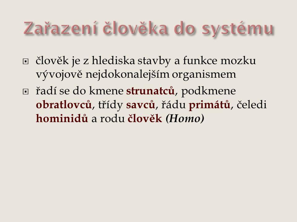 Zařazení člověka do systému