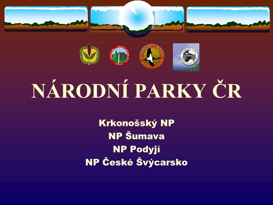 Krkonošský NP NP Šumava NP Podyjí NP České Švýcarsko