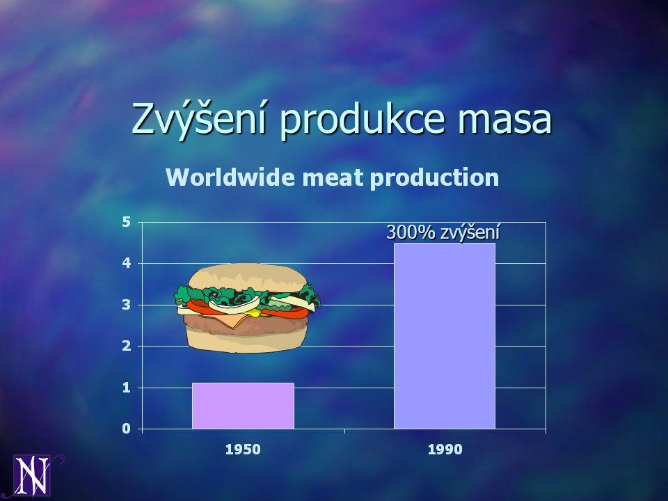 Zvýšení produkce masa 300% zvýšení
