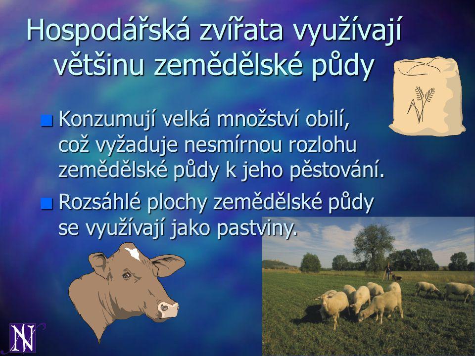 Hospodářská zvířata využívají většinu zemědělské půdy