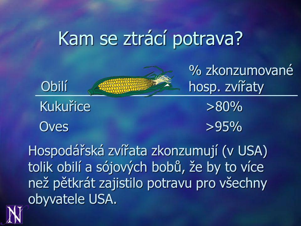 Kam se ztrácí potrava % zkonzumované hosp. zvířaty Obilí