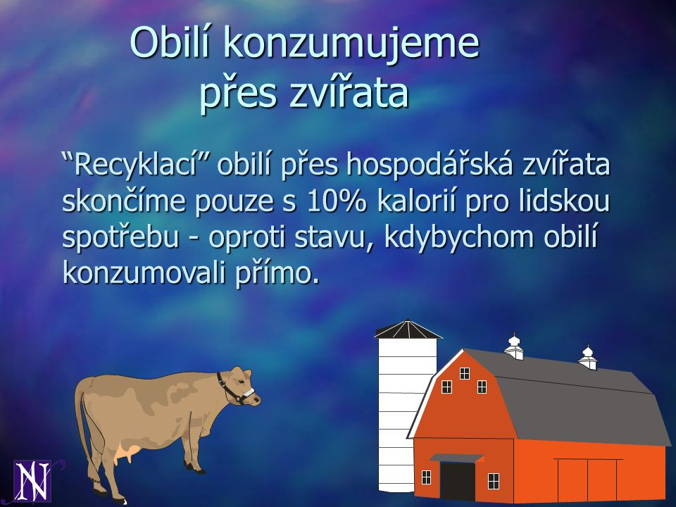 Obilí konzumujeme přes zvířata