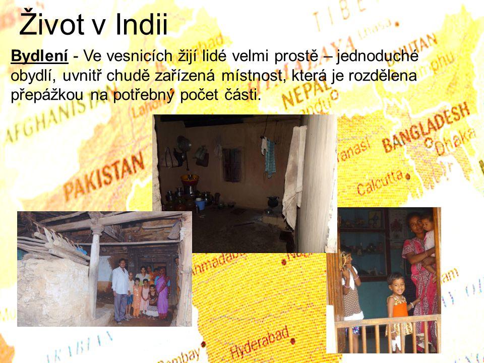 Život v Indii
