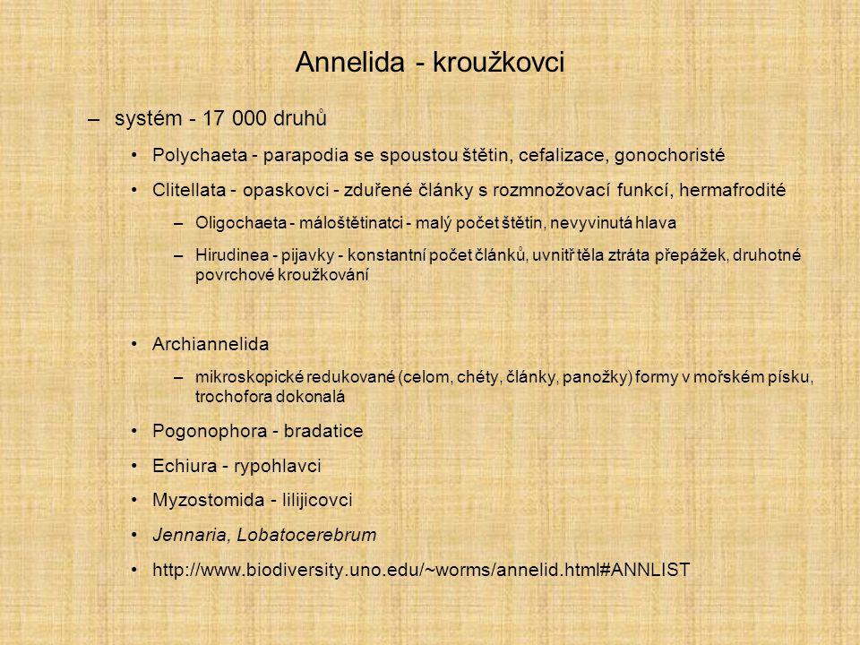 Annelida - kroužkovci systém - 17 000 druhů